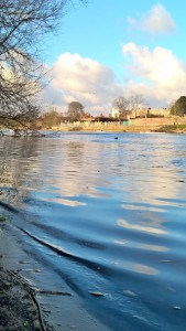 The River Thames at Hampton Court