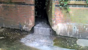 Even though drains are cleaned up they can pollute rivers in London again within months